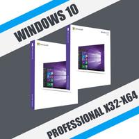 Windows 10 Professional (x32-x64)