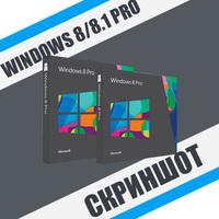 Скриншот Windows 8/8.1 Professional