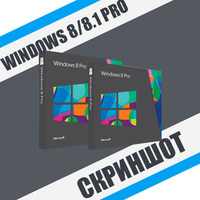 Скриншот Windows 8/8.1 Professional